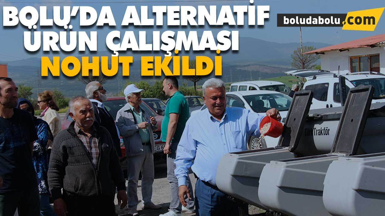 BOLU'DA ALTERNATİF ÜRÜN NOHUT