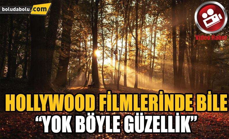 HOLLYWOOD FİLMLERİNDE BİLE